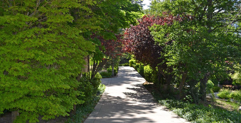177-shorewood-driveway