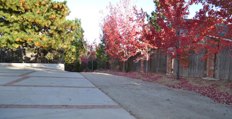 179-grandview-driveway