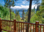 27907-n-shore-lakeview